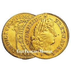 Louis d'Or Louis XIV à l'écu
