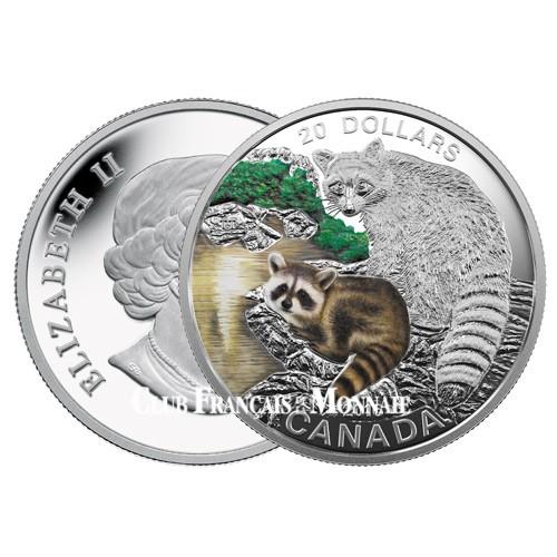 20 Dollars Argent Canada BE 2016 colorisée - Raton laveur