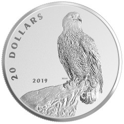 20 Dollars Argent Canada BE 2019 - Bald Eagle