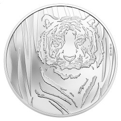 250 Togrog Argent BE 2019 - Tigre