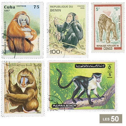 50 timbres Singes