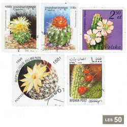 50 timbres Cactus