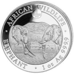100 Shilling Argent Somalie BU 2020 - Éléphant