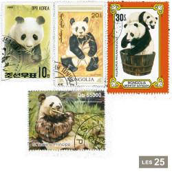25 timbres pandas
