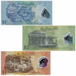 Lot 3 Billets Brunei 2011