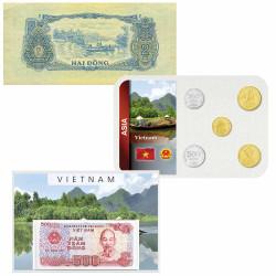 Lot des monnaies Vietnam